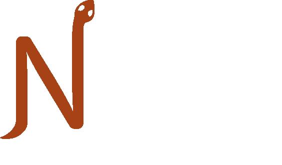 לוגו - דך ראשי